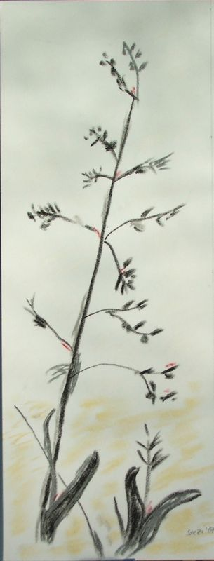 Blumejapanisch-07